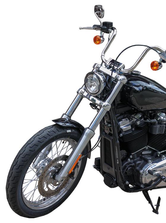 Harley-Davidson® Softail Standard